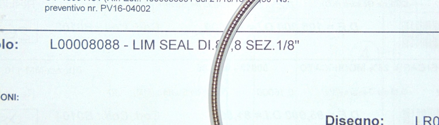 Lim seal in PTFE modificato